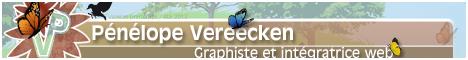 pvereecken.fr